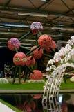 2010年陈列floralies开花跟特工厂 免版税库存照片