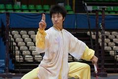 2010年fu英雄意大利kung浏览 免版税库存图片