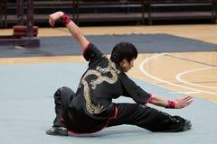 2010年fu英雄意大利kung浏览 库存照片