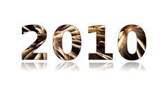 2010 Новый Год Стоковые Фото