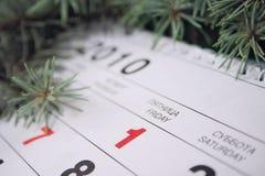 2010 1月一日 免版税图库摄影
