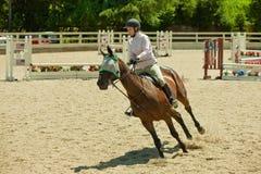 2010 6 de junio, demostración abierta del caballo, Portola Valley, CA Fotografía de archivo