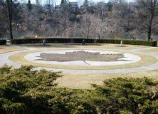 2010 duży wysoki liść klonu park Toronto Obraz Royalty Free