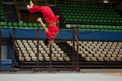 2010 fu bohaterów włoska kung wycieczka turysyczna Obrazy Stock
