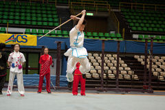2010 fu bohaterów włoska kung wycieczka turysyczna Zdjęcia Stock