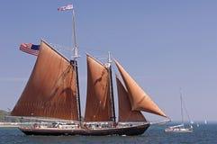 2010 högväxt roseway ships för challenge Arkivbild