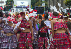 2010 karibiska karneval leicester uk Royaltyfria Foton