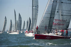 2010 Melges 32 World Championship Royalty Free Stock Images