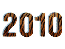 2010 Tiger Front View. 2010 Year concept with tiger's fur texture Royalty Free Stock Photos