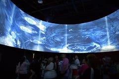 2010 world expo Stock Photography