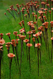 2010 wystawy floralies kwiatu Ghent roślina Obrazy Royalty Free