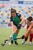 2011个杯子英国欧洲德国曲棍球爱尔兰v 库存图片