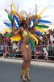 2011个每年海角狂欢节verde 库存图片