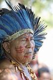 2011个每年狂欢节法属圭亚那s 免版税库存图片