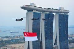 2011个通过新加坡的标志飞行国家ndp 免版税库存图片