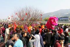 2011中国新的raceday年 库存图片