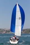 2011年bosphorus收集杯子航行w 免版税图库摄影