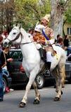 2011年brasov 6月可能游行罗马尼亚 库存图片