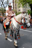 2011年brasov 6月可能游行 免版税库存照片
