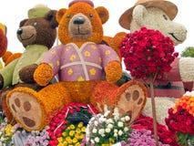 2011朵玫瑰比赛 免版税库存照片