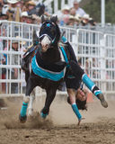 2011 aktów Oregon rodeo siostry sureshot Obraz Royalty Free