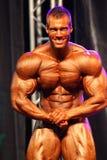 2011 bodybuilding mästerskapfitparade Arkivbild