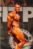 2011 bodybuilding mästerskapfitparade Arkivbilder