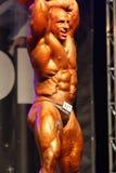 2011 bodybuilding mästerskapfitparade Royaltyfria Bilder