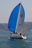 2011 bosphorus inkasowy filiżanki żeglowanie w Zdjęcia Royalty Free