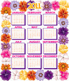 2011 Calendar Flower Border. Vector illustration of 2011 Calendar with a Flower border Royalty Free Stock Images
