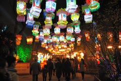 2011 Chinese New Year Temple Fair in chengdu Royalty Free Stock Photo