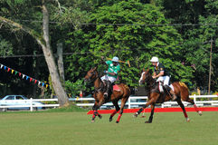 2011 FIP POLO WORLD CUP Stock Photo