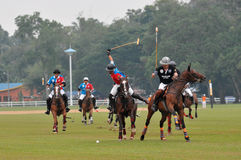 2011 FIP POLO WORLD CUP Royalty Free Stock Photo