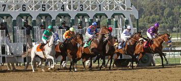The 2011 Las Virgenes Stakes Stock Images