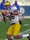 2011 le football de NCAA - concentration de réception Image libre de droits