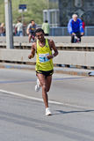 2011 maraton Belgrade Zdjęcie Royalty Free