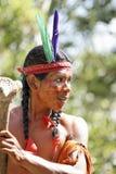 2011 rocznych karnawałowych francuskich Guiana s Zdjęcie Stock