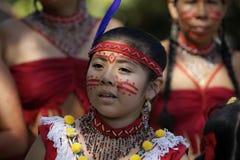 2011 rocznych karnawałowych francuskich Guiana s Zdjęcie Royalty Free
