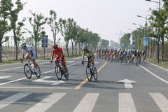 2011 tour of Taihu lake bicycle race Royalty Free Stock Image