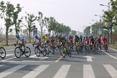 2011 tour of Taihu lake bicycle race Royalty Free Stock Photo