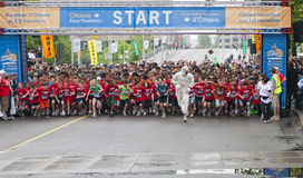 2011 Y Ottawa Marathon Royalty Free Stock Image
