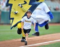 2012业余棒球体协-东部同盟 免版税库存图片