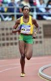 2012个域牙买加赛跑者跟踪 免版税图库摄影