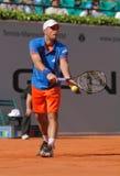 2012个杯子马力小组网球世界 免版税库存图片