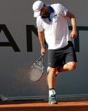 2012年安迪roddick网球 库存照片