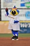 2012 béisbol de la liga menor - locura del macot Fotografía de archivo