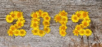 2012 floral Stock Images