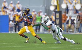 2012 futebol do NCAA - Baylor @ WVU Fotografia de Stock Royalty Free