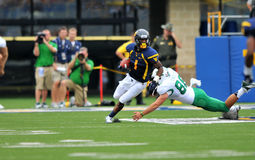 2012 futebol do NCAA - WVU contra Marshall Foto de Stock