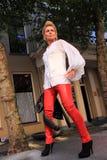 2012 inkasowej spadek mody nowa zima Zdjęcia Stock